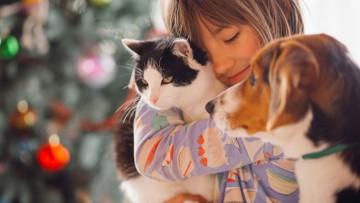 نگهداری از گربه و سگ و روش های آشنا کردن آن ها با هم